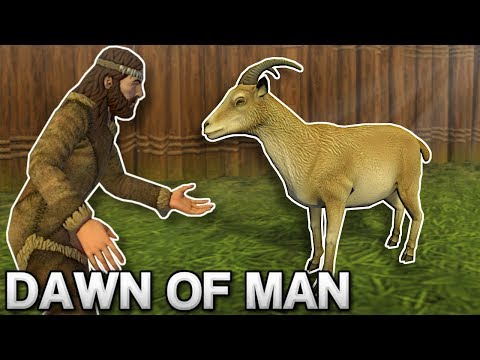 TAMING GOATS & BUILDING WALLS! – Dawn of Man Gameplay – Prehistoric City Building Game