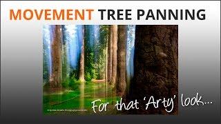 Pan Blur Trees