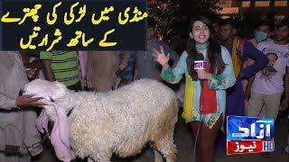 bakra mandi funny - मुफ्त ऑनलाइन वीडियो