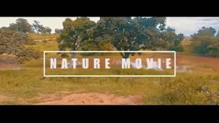 CINEMATIC VIDEO | NATURE MOVIE | PHANTOM 3 ADVANCED | DJI