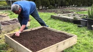 How To Make Your Own Urban Mini-garden
