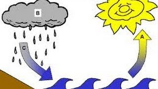 Water Cycle - Animation lesson for Kids -www.makemegenius.com