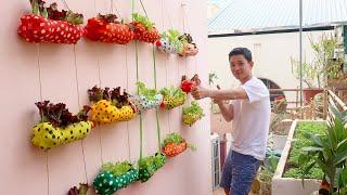Clever Plastic Bottle Vertical Garden Ideas, Gardening Ideas For Home