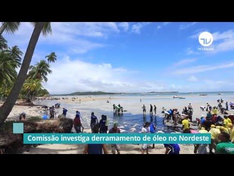 Forças Armadas participam de audiência do derramamento de óleo - 07/11/19