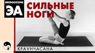 Лучшие упражнения для укрепления мышц ног. Йога для начинающих