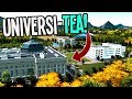 Can we get an Entire Universi-TEA Campus Drinking Tea in Cities Skylines?