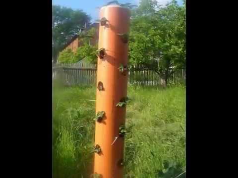 vertikaler Garten -----vertikale Blumenrohre