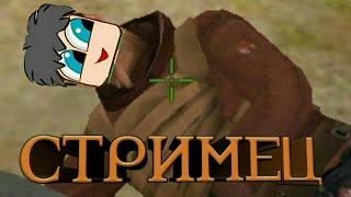 Стримец! Играем, общаемся! Донат от 1 рубля!