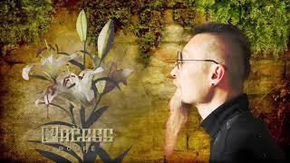Video PAČESS - Poupě (Album Teaser)