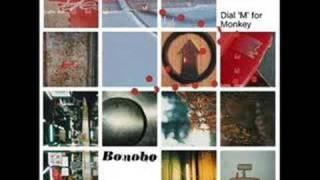 """Video thumbnail of """"Bonobo - Noctuary"""""""