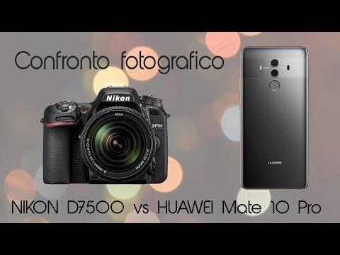 Confronto Fotografico NIKON D7500 vs HUAWEI Mate 10 Pro