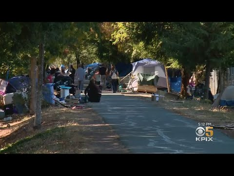 Homeless Encampment Takes Over Public Trail In West Santa Rosa