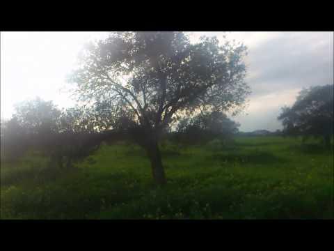 Beautiful Wastelands near Lakatamia Cypr