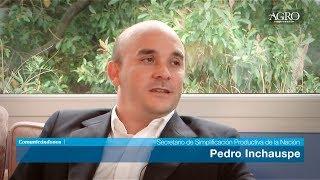 Pedro Inchauspe - Secretario de Simplificación Productiva de la Nación