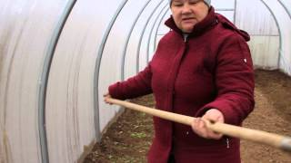Результат посадки салата и укропа под зиму видео