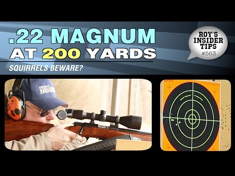 .22 Magnum At 200 Yards