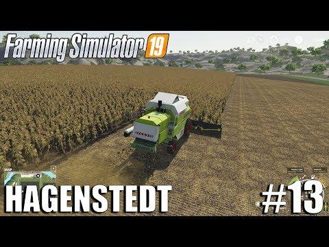 Harvesting Sunflowers | Hagenstedt | Timelapse #13 | Farming Simulator 19 Timelapse