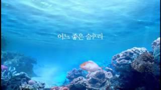 """매취순 """"도미의 꿈"""""""