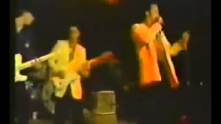 Stevie Ray Vaughan  and The Fabulous Thunderbirds  - The Crawl