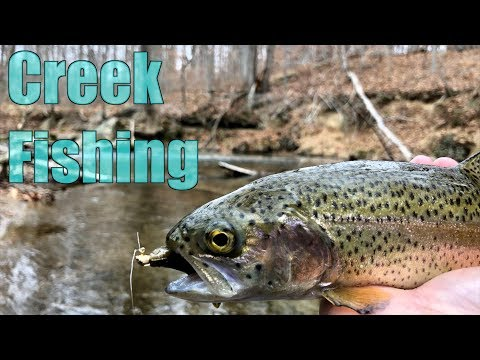 Trout Fishing an ICY COLD Creek! (Winter Fishing Tips)
