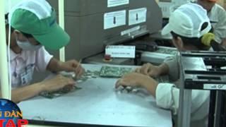 Truyền Hình Chống Hàng Giả và Bảo Vệ Thương Hiệu Việt Nam 09