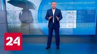 Погода 24: циклон принесет на запад России сильные дожди - Россия 24