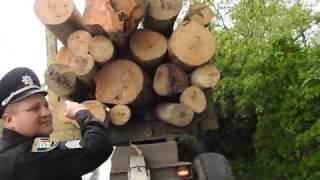 Незаконна вирубка лісів Закарпаття (02.05.2017)