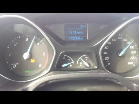 80 Benzin in 4021