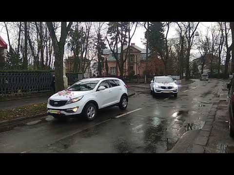 100+ АВТО на ВЕСІЛЛЯ (від 200 грн) + ПРИКРАШЕННЯ, відео 12