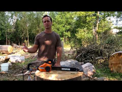 WORX Electric Chainsaw review (and gas vs electric)