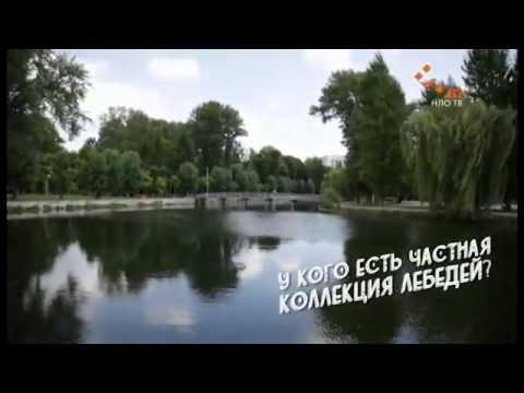 На что стоит посмотреть, если вы в Тернополе | Города