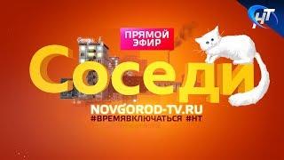 В прямом эфире НТ Павел Татаренко объявил, что школьников Новгородской области ждут внеплановые каникулы с 13 февраля