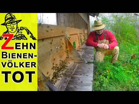 10 Bienenvölker im Rigotti-Garten gestorben