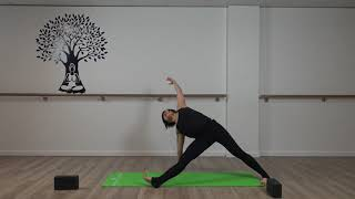 Hatha Yoga With Imelda