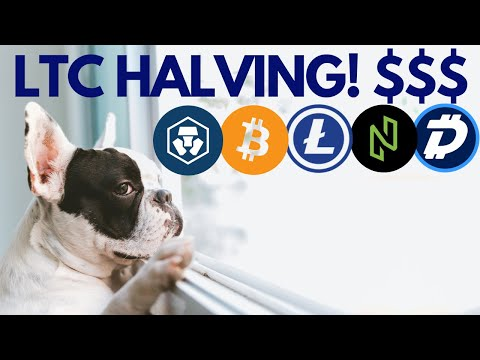 When is LITECOIN Halving? $650 LTC? HUGE MCO and NULS Cryptocurrency News!