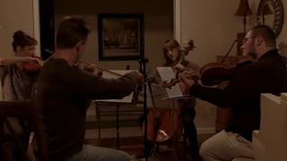 The First Noel (String Quartet Version) - Sarah Joy