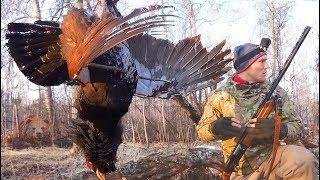 НЕЧТО НА ОХОТЕ Не спокойная весенняя охота на глухарином току Сезон охоты 2018
