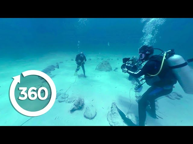 MythBusters: Underwater Shark Experiment (360 Video)