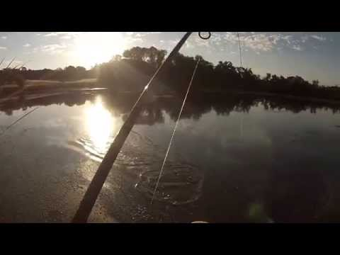 California Pond Fishing
