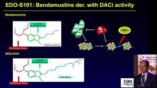 HDAC inhibitors and epigenetic modulation   Enrique Ocio, Spain