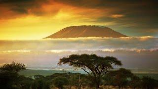 Документальный фильм BBC о природе и животных дикой Африки BBC на русском