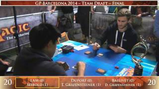 Grand Prix Barcelona 2014: Final (Team Draft)