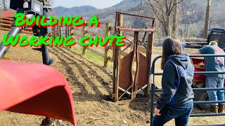 How to build a cattle chute....