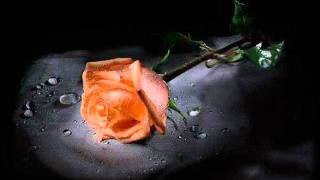 تحميل اغاني محمد عبده - موعد الأحباب MP3