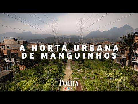 Horta gigante complementa refeição de 800 famílias em favela do Rio na pandemia