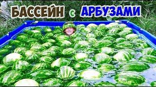 БАССЕЙН С АРБУЗАМИ | НЕ ДОМ - DIY