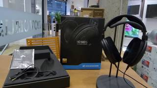 Sennheiser HD660S Auricular