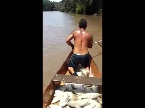 Lesperienza più larga che pesca russa di pesce