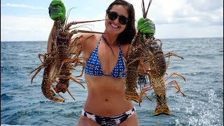 Florida Lobster Limits!- CATCH Clean COOK