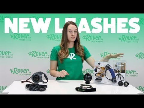 Reviewing New Dog Leashes | Rover.com
